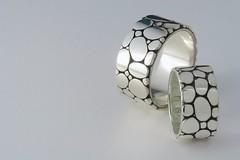 Photograph: Wedding Rings 1