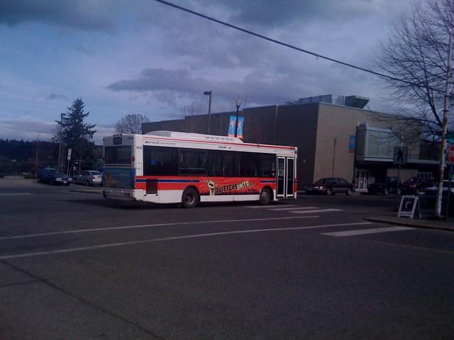 Courtenay transit bus