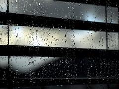 Raindrops on the Window III