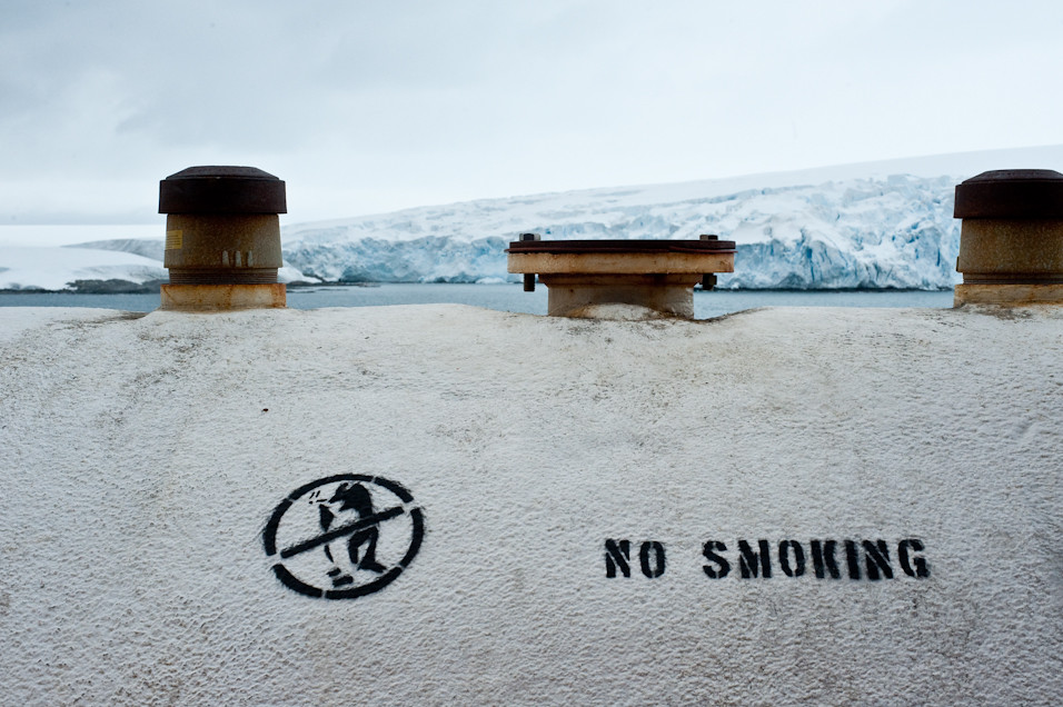 No Smoking Penguins