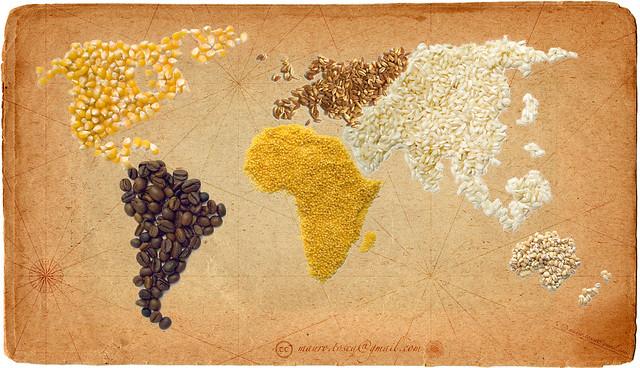 Harvest for the World