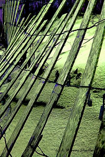 abstract art texture abandoned beach photoshop manipulated photography sand florida shoreline destin mosca publicplaces project365 nikond60 northwestflorida kartpostal amazingamateur theunforgettablepictures unusualviewsperspectives