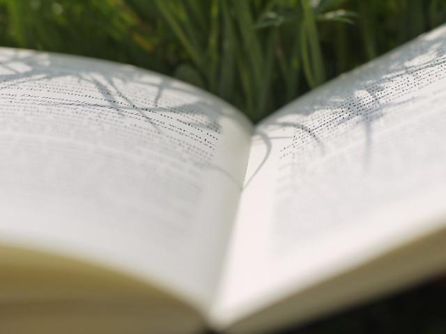 Book Buch Schatten Shadow Gras Grasses Gräser Nature Natur