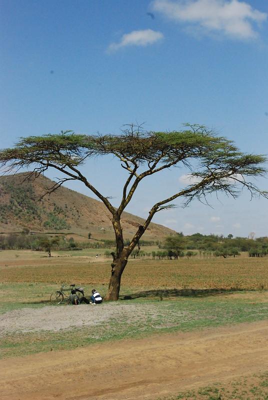 africa 014
