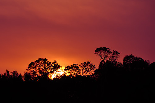sunset nature shikoku