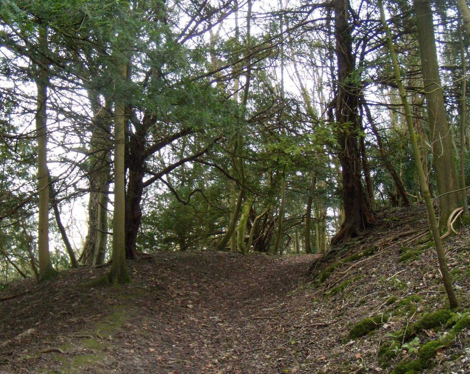 Path Arundel Circular