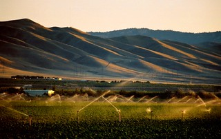 hills of southern San Joaquin County, July 1, 2007 | by /\/\ichael Patric|{