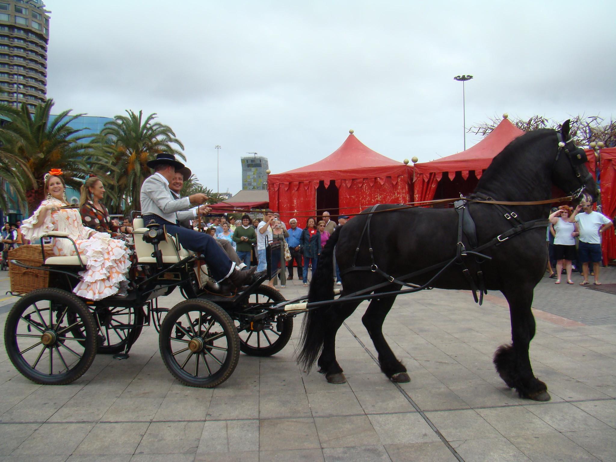 carreta de caballos II Feria de abril Las Palmas Gran Canaria
