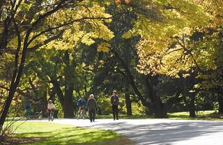 Walking and Biking at Park | by ICMA Photos