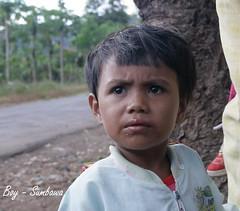 Indonesia  Sumbawa
