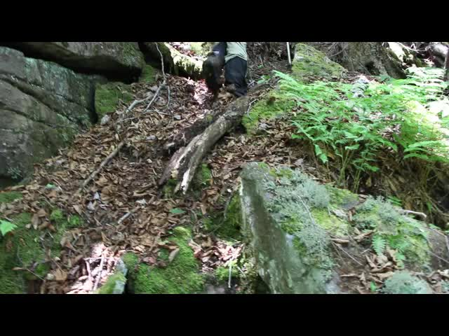 446 Video of Bushwhacking west from Balsam Cap to Rocky Mountain - steep climbing up to Rocky