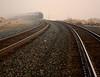 Morning Train with Tracks by Robert Cowlishaw (Mertonian)