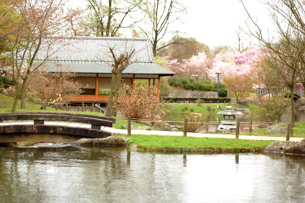 Jardin Japonais Hasselt Hellswing Flickr
