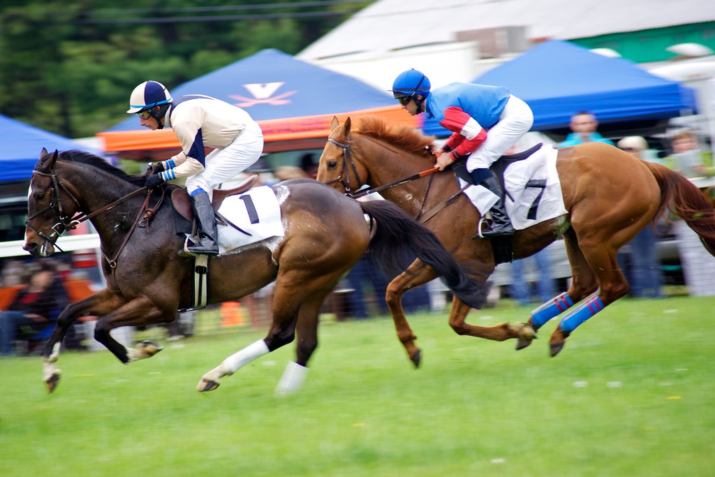 Best Horse Races To Bet On In 2021