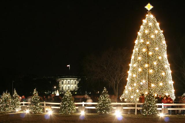 Washington Dc Christmas.The 2008 National Christmas Tree Washington Dc The 2008