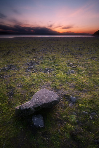 ocean sunset sea seaweed green beach marina perfect rocks soft glow photographer des pugetsound moines the d80 tokina1116