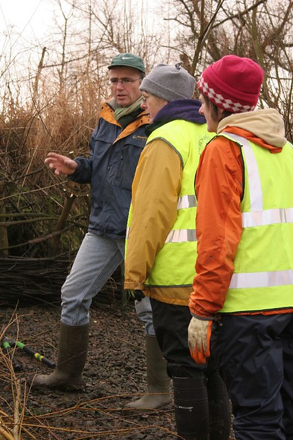 Richmond Environment Trust Willow Spiling, Thames Towpath at Kew