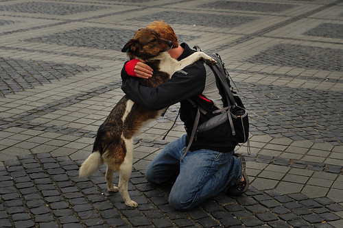 Tyler Hugging Stray Doggie | by goingslowly