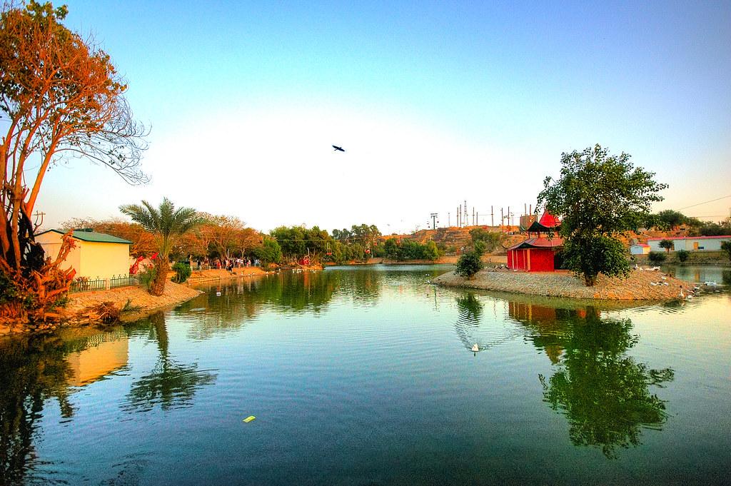 safari park karachi dating dating en gennemsnitlig ser pige