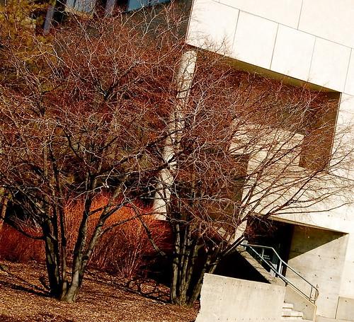 college architecture campus landscape university cornell newyorkstate ithaca cornelluniversity malotthall escalerasstairs visipix edbrodzinsky