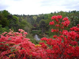 View over Leonardslee Gardens | by Leimenide