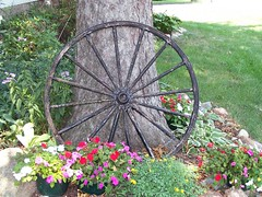Old Wagon Wheel -Summer | by MissConduct*