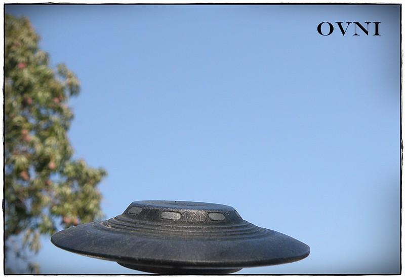 OVNI (Similar,lo mismo, pero mas barato)