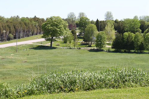 field view counry