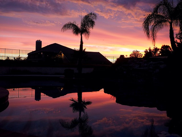 Sunset reflection on moms pool this evening.