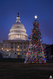 2016 U.S. Capitol Christmas Tree | by USCapitol