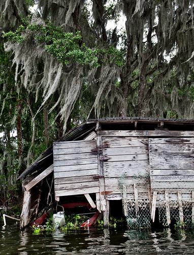 trees water boat florida foliage damage boathouse hangingmoss deleonspringsstatepark springgardenlake