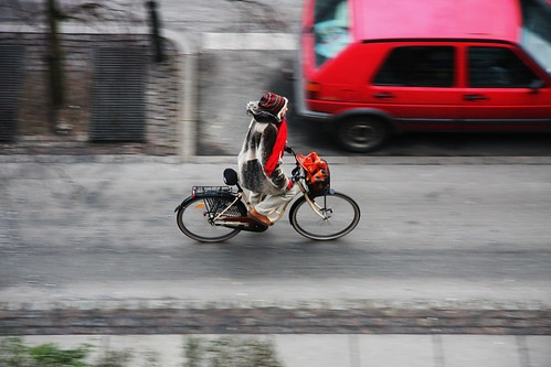 Copenhagenize: Cycling in Winter
