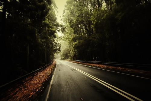 Australie - Retour sur la Great Ocean Road
