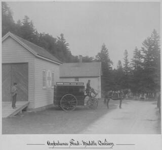 The Grosse Île ambulance built in 1899 by the John Burns Company of Toronto, ca. 1905 / L'ambulance de Grosse-Île construite en 1899 par la compagnie John Burns de Toronto, vers 1905