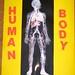 Human Body Lapbook by JDboy age 6