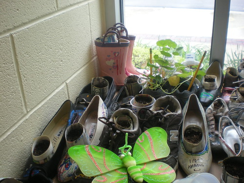 gym shoe garden | by Brookfield Public Library