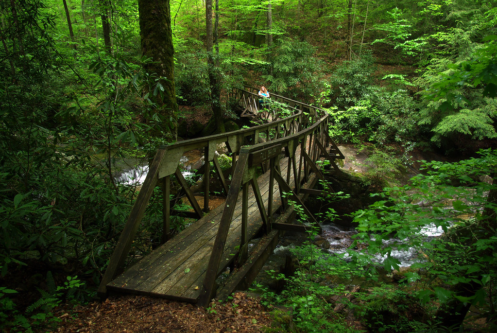Zig-zag Bridge, Alexis, Angel Falls Trail, Big South Fork NRRA, Scott Co, TN
