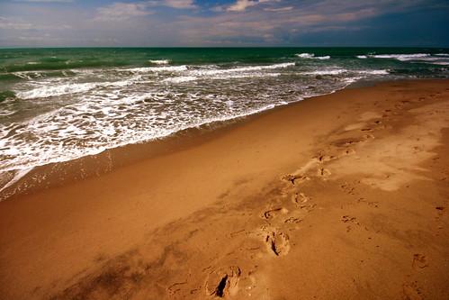 Spiaggia nel Parco dell'Uccellina [2]
