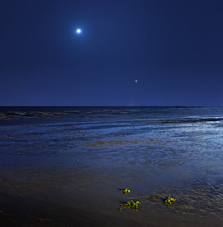 Jupiter by the Moon | by lrargerich