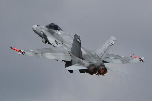 20150718 (5)_F18_Hornet | by FarnboroJohn TYVM for 2,000,000 Views