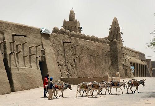 Timbuktu preferred method of transport, Mali, W. Africa | by emilio labrador