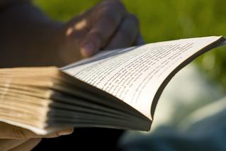 Reading | by ZapTheDingbat