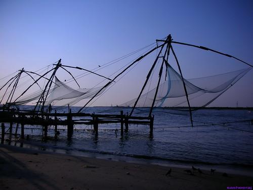 Nets In Low Tide