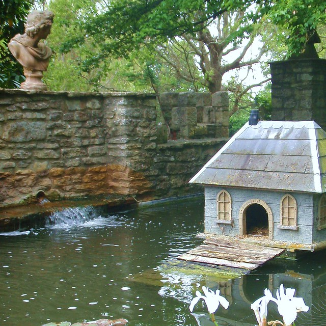 Duck House #1
