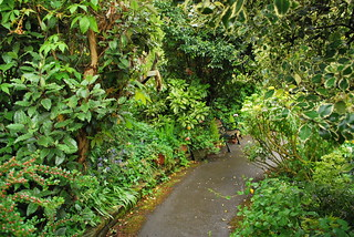 Garden Path | by goingslowly