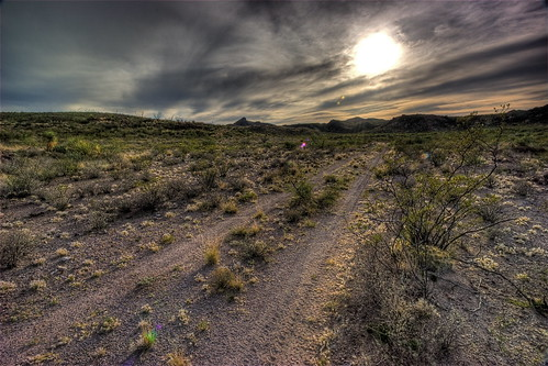 sun nature sunshine texas peace desert wind bigbend bigbendranchstatepark tascate solatario princessstandintherainvacation