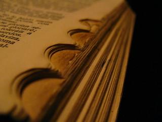 bible | by SM2 Studio