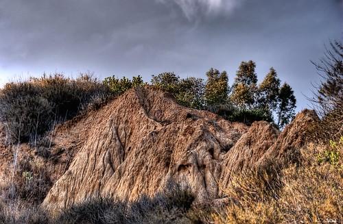 california brown mountain tree rock explore dirt fp hdr ventura photomatix sigma18200 nikond80 topazadjust