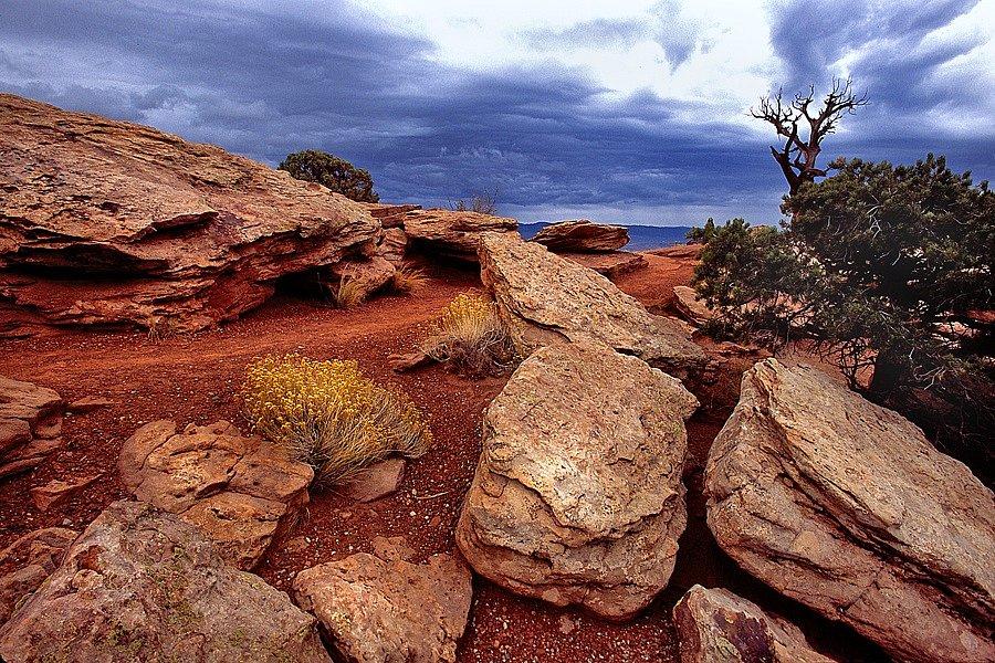 Rock Garden / Stormy Sky