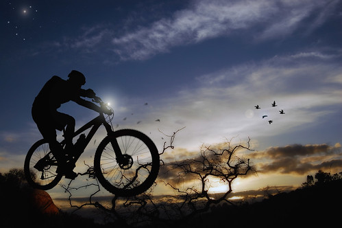 sky tree birds bicycle silhouette clouds sunrise branch shadows mountainbike comp clairemont marzocchi response diamondback mtbike goldenglobe platinumphoto marianbear